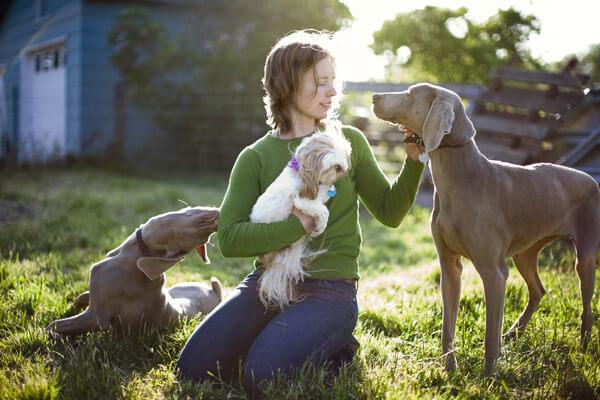 cuidar de animais de estimação